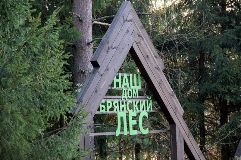 gunswood, брянский лес, брянский бренд