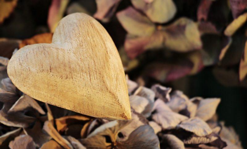 gunswood, брянский лес, брянский бренд, доски для подачи, деревянные доски, разделочные доски